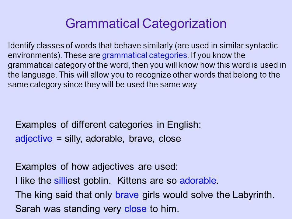 Grammatical Categorization Examples of different categories in English: adjective = silly, adorable, brave, close Examples of how adjectives are used: I like the silliest goblin.