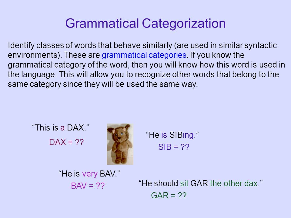 Grammatical Categorization This is a DAX. DAX = ?.