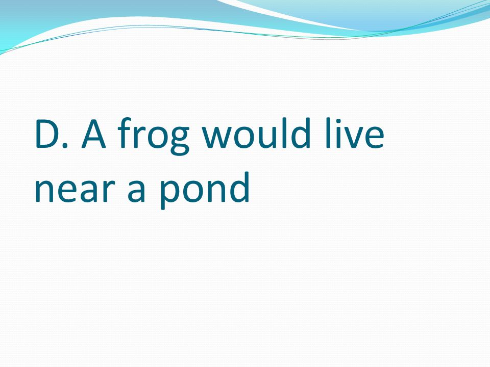 Which of these sentences is probably true. A. Toads are larger than frogs B.