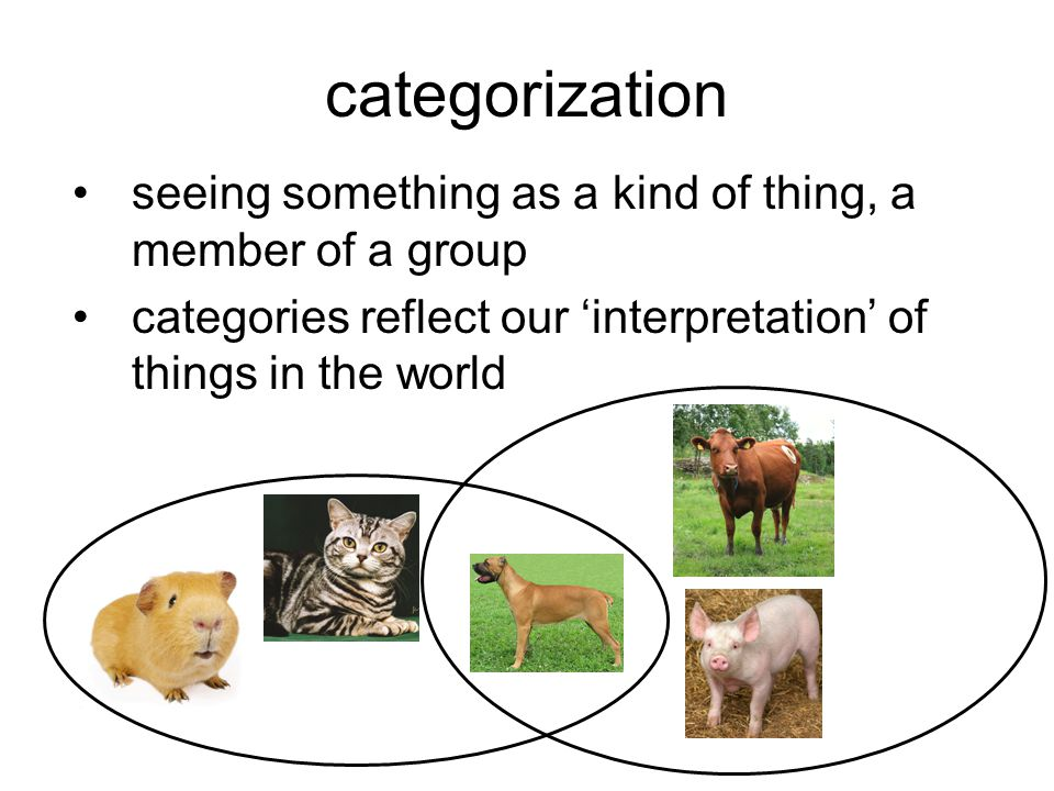 categorization a cognitive ability that we mostly apply unconsciously rises to awareness mostly in problematic cases