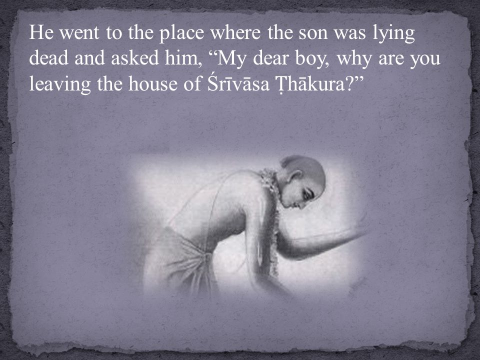 He went to the place where the son was lying dead and asked him, My dear boy, why are you leaving the house of Śrīvāsa Ṭ hākura?