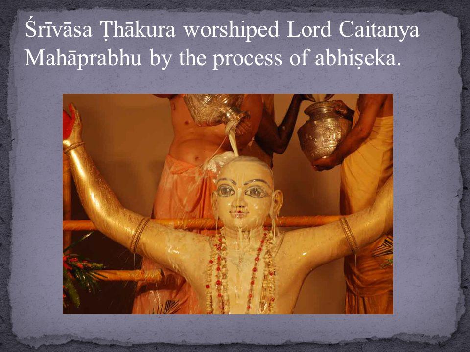 Śrīvāsa Ṭ hākura worshiped Lord Caitanya Mahāprabhu by the process of abhi ṣ eka.