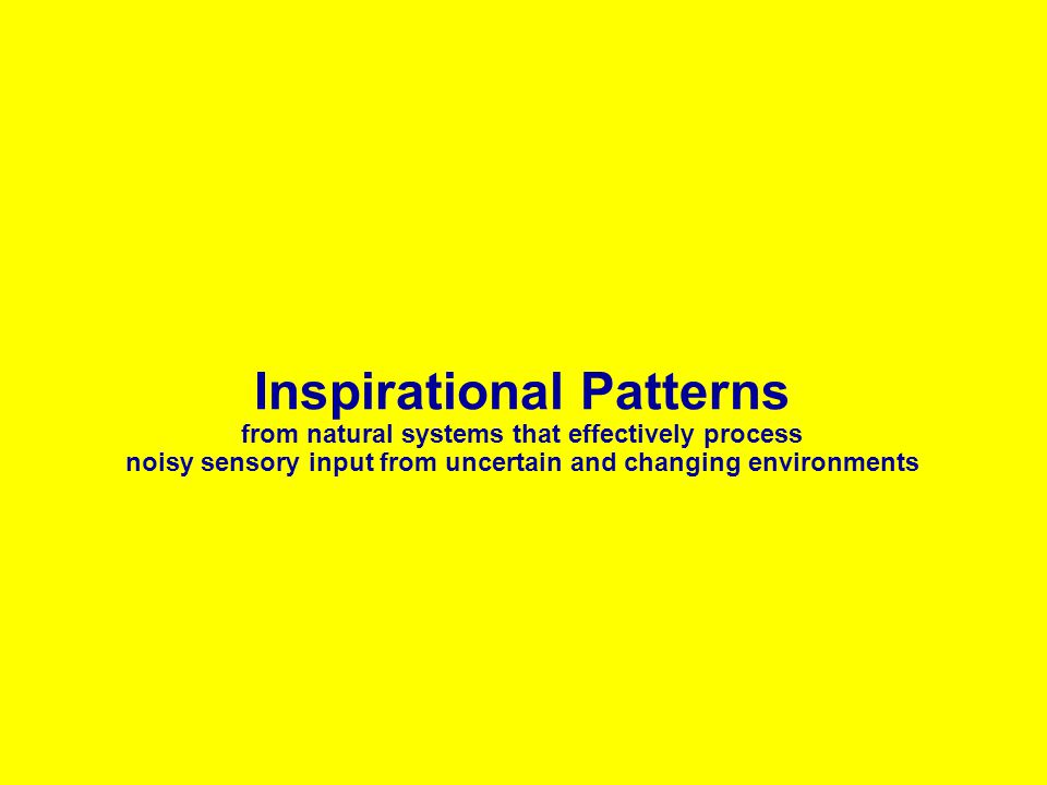 Inspirational Patterns from natural systems that effectively process noisy sensory input from uncertain and changing environments