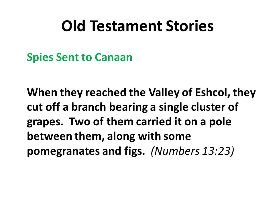 Old Testament Stories Spies Sent to Canaan When they reached the Valley of Eshcol, they cut off a branch bearing a single cluster of grapes.