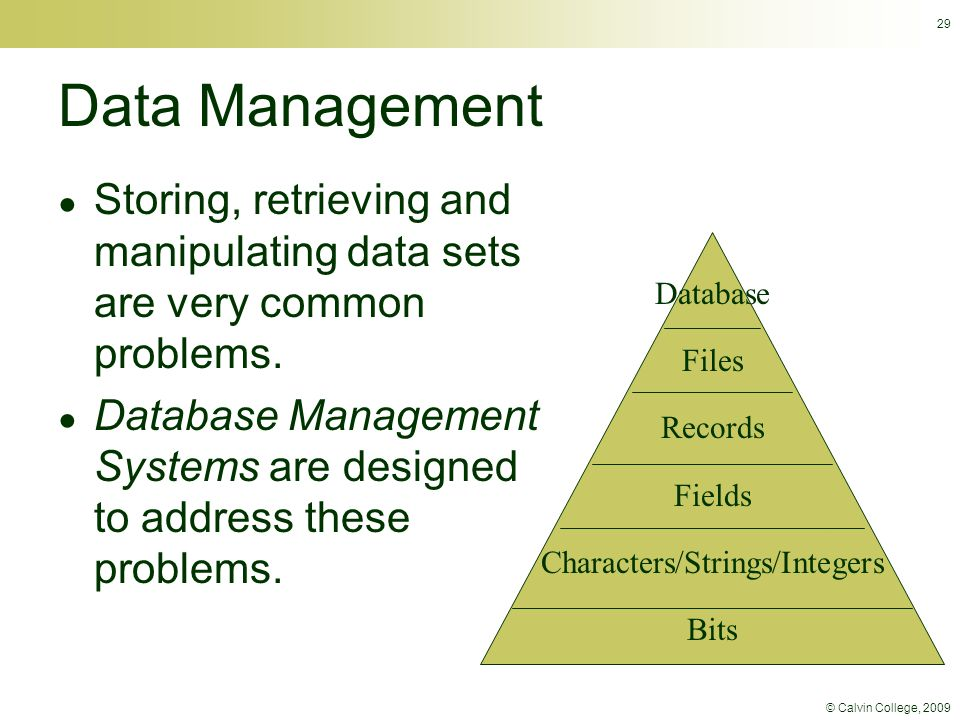 © Calvin College, 2009 29 Data Management ● Storing, retrieving and manipulating data sets are very common problems.