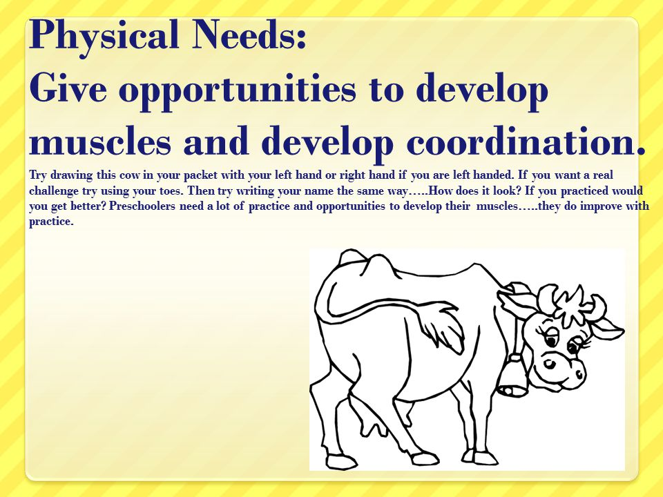 Physical Needs: Give opportunities to develop muscles and develop coordination.