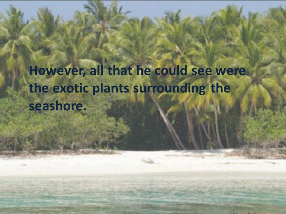 However, all that he could see were the exotic plants surrounding the seashore.