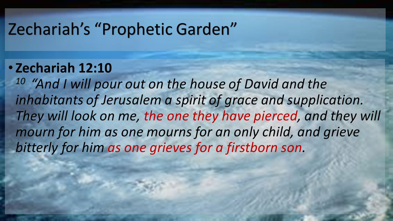 """Zechariah's """"Prophetic Garden"""" Zechariah 12:10 10 """"And I will pour out on the house of David and the inhabitants of Jerusalem a spirit of grace and su"""