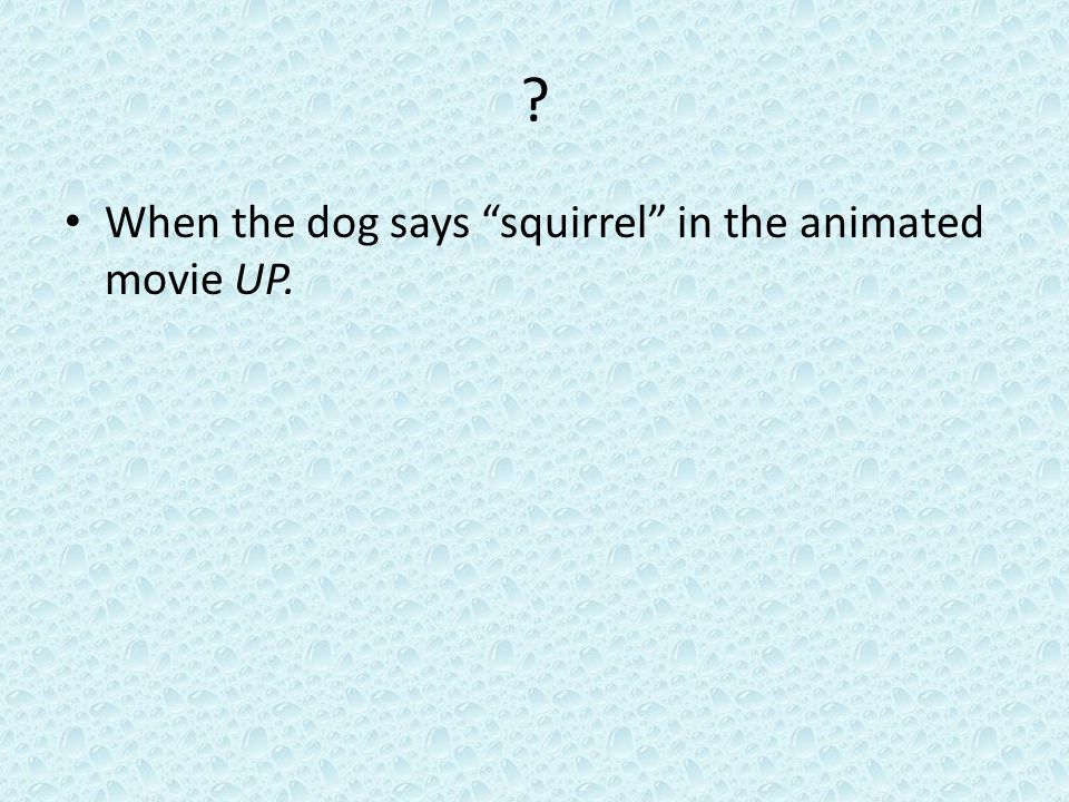 ? When the dog says squirrel in the animated movie UP.