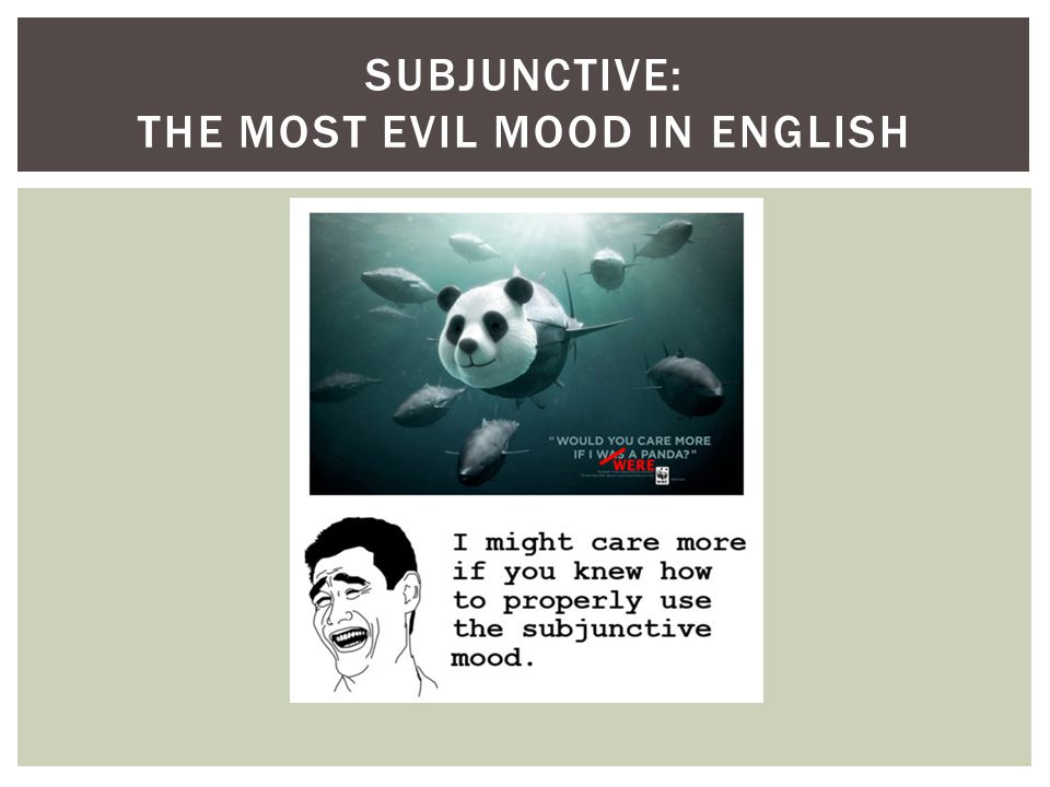 SUBJUNCTIVE: THE MOST EVIL MOOD IN ENGLISH