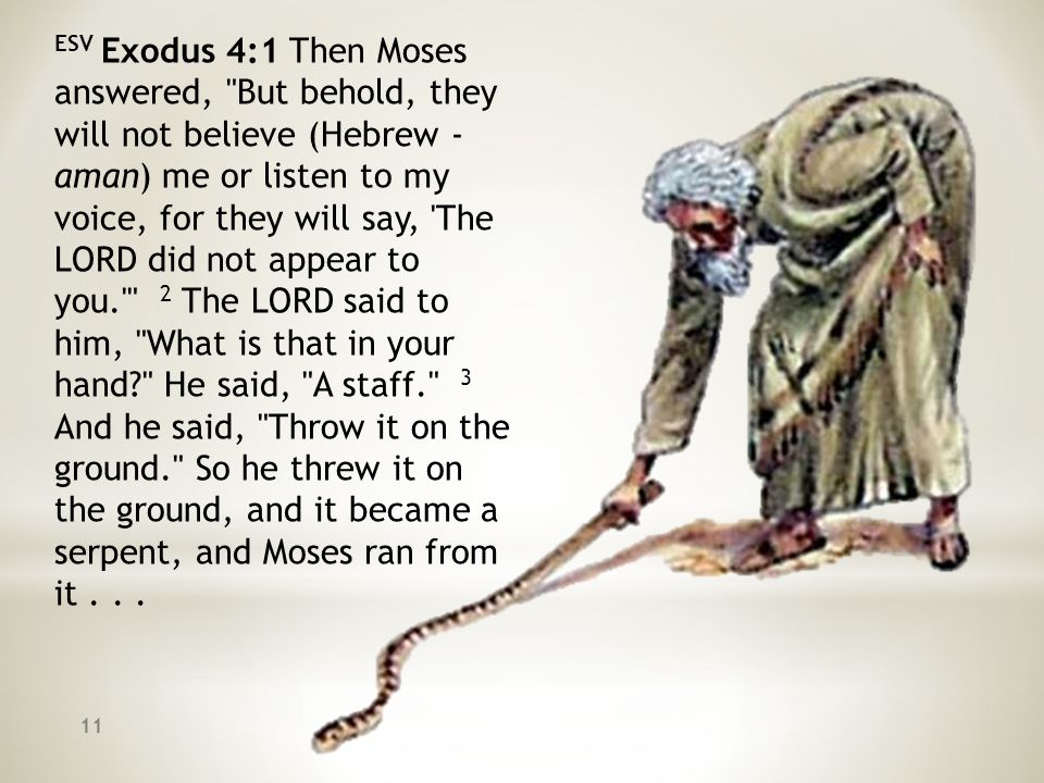 ESV Exodus 4:1 Then Moses answered,
