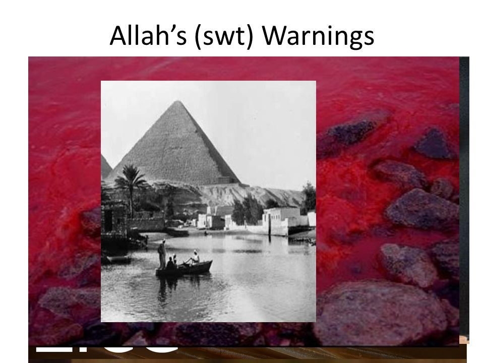 Allah's (swt) Warnings