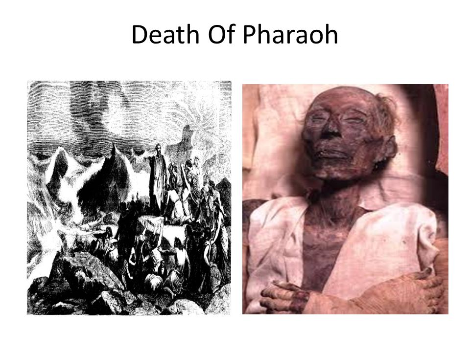 Death Of Pharaoh