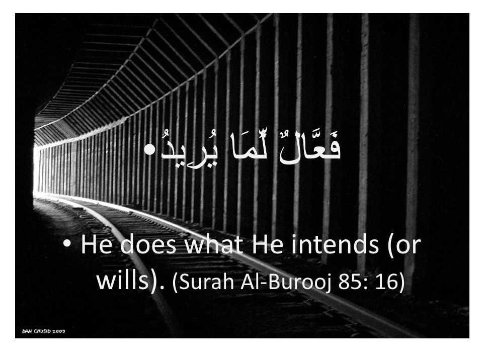 فَعَّالٌ لِّمَا يُرِيدُ He does what He intends (or wills). (Surah Al-Burooj 85: 16)