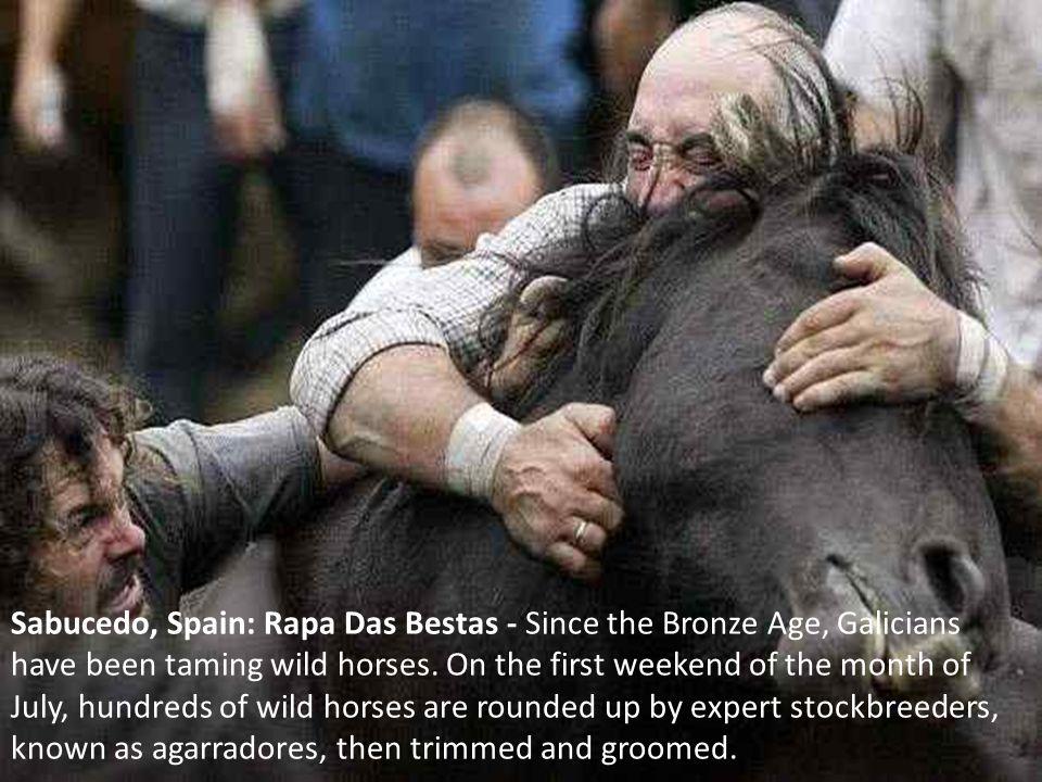 Sabucedo, Spain: Rapa Das Bestas - Since the Bronze Age, Galicians have been taming wild horses.
