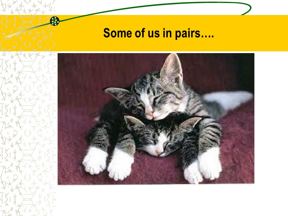 Some of us in pairs….