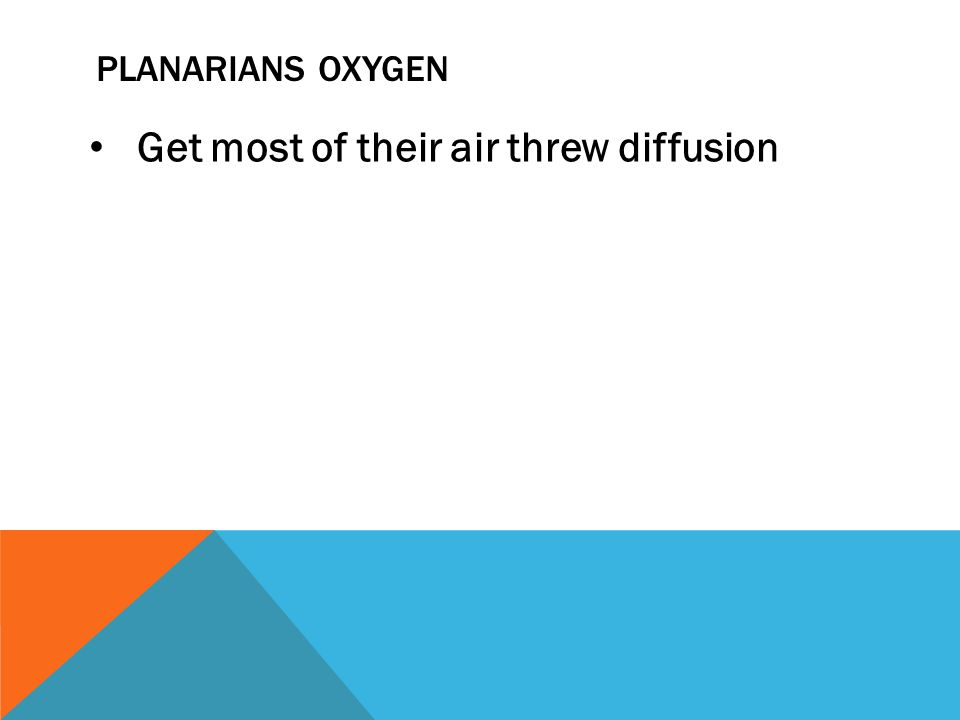 PLANARIANS OXYGEN Get most of their air threw diffusion