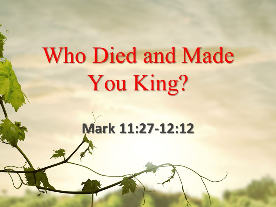 Who Died and Made You King Mark 11:27-12:12