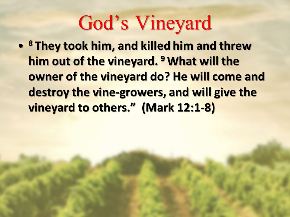 God's Vineyard 8 They took him, and killed him and threw him out of the vineyard.