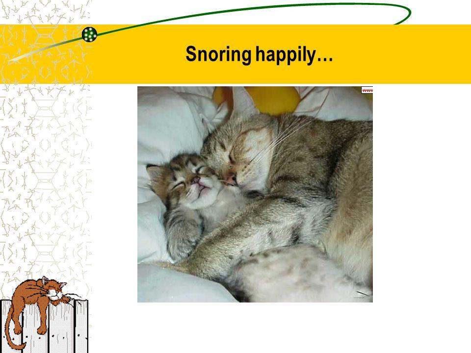 Snoring happily…