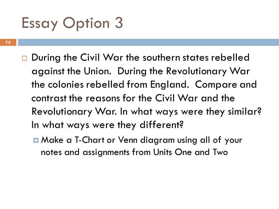 Essay Option 3 75  During the Civil War the southern states rebelled against the Union.