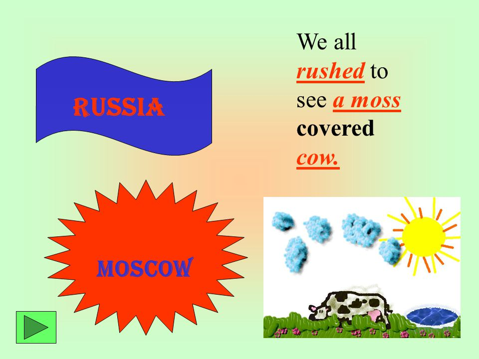 Moscow Russia We all rushed to see a moss covered cow. Russia