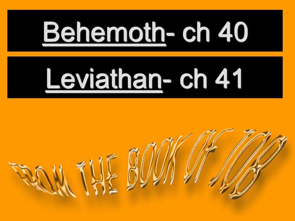 Behemoth- ch 40 Leviathan- ch 41