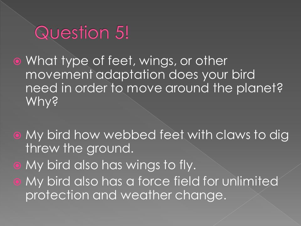 WWhat type of feet, wings, or other movement adaptation does your bird need in order to move around the planet.