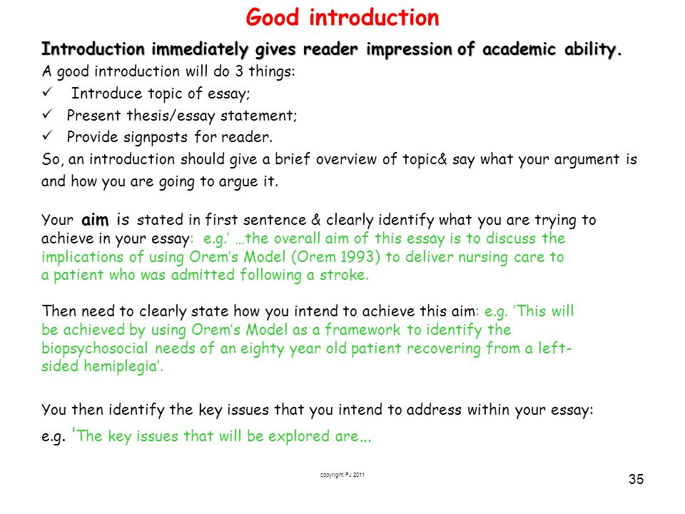 writing introductions to academic essays