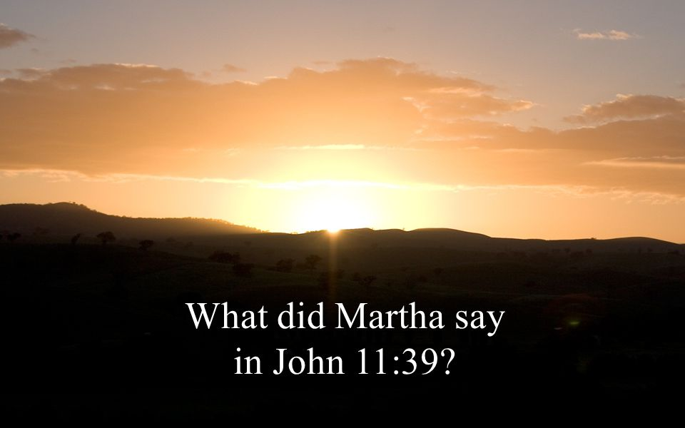 What did Martha say in John 11:39?