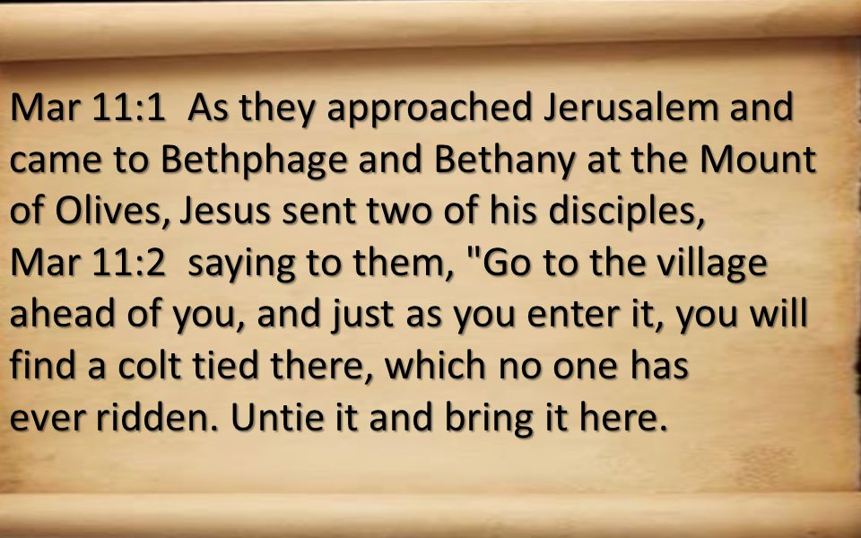 Mar 11:1 As they approached Jerusalem and came to Bethphage and Bethany at the Mount of Olives, Jesus sent two of his disciples, Mar 11:2 saying to them, Go to the village ahead of you, and just as you enter it, you will find a colt tied there, which no one has ever ridden.