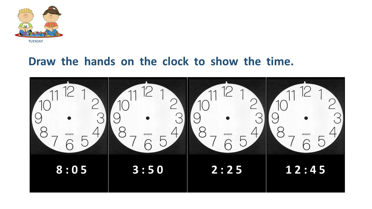 TUESDAY Draw the hands on the clock to show the time. 8 : 0 53 : 5 02 : 2 51 2 : 4 5