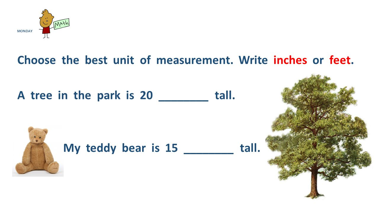 MONDAY Choose the best unit of measurement.Write inches or feet.