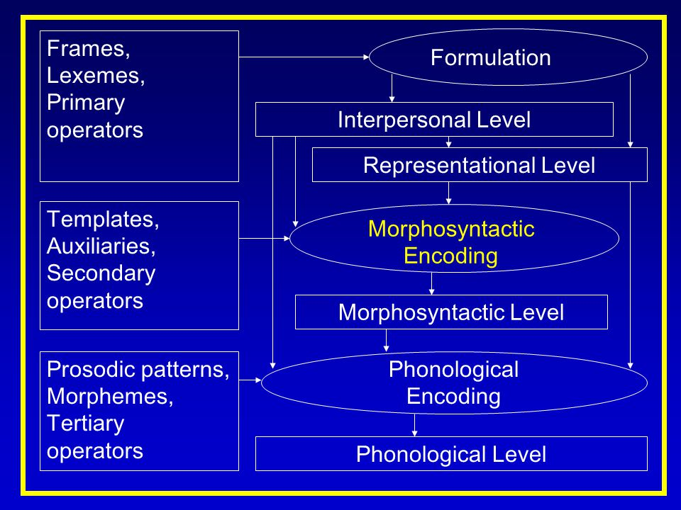 Frames, Lexemes, Primary operators Templates, Auxiliaries, Secondary operators Interpersonal Level Representational Level Formulation Morphosyntactic Encoding Morphosyntactic Level Phonological Encoding Phonological Level Prosodic patterns, Morphemes, Tertiary operators