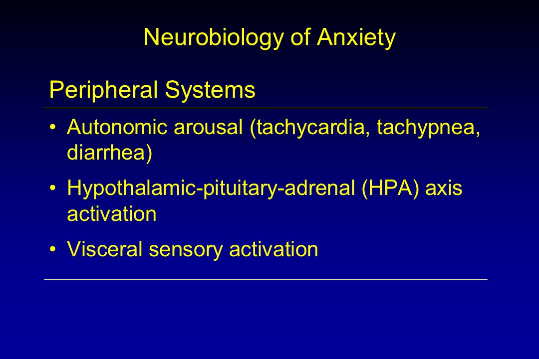 Neurobiology of Anxiety Peripheral Systems Autonomic arousal (tachycardia, tachypnea, diarrhea) Hypothalamic-pituitary-adrenal (HPA) axis activation Visceral sensory activation