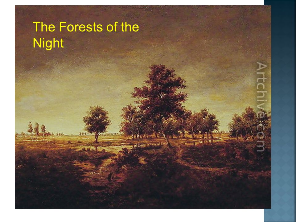 The Forests of the Night