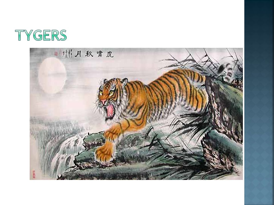  Tyger, Tyger.burning bright, In the forests of the night; What immortal hand or eye.