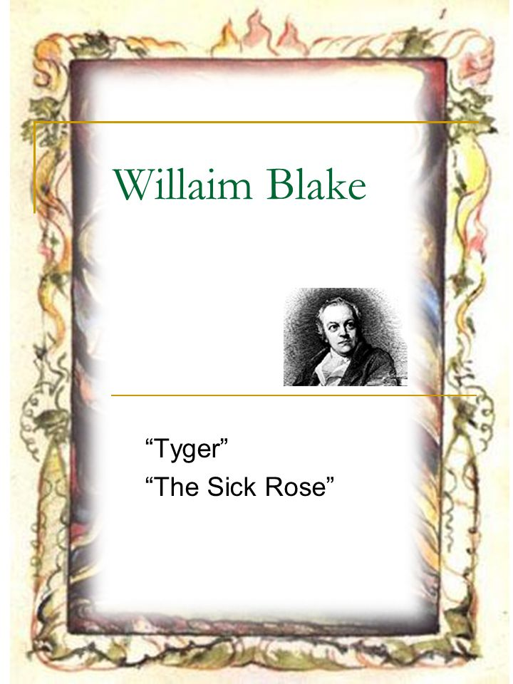 Outline William Blake The Sick Rose Tyger (a companion of the innocent The Lamb).
