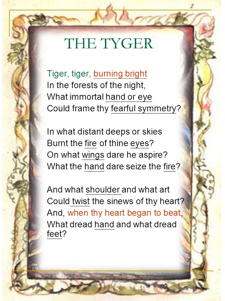 THE TYGER (2) What the hammer.what the chain. In what furnace was thy brain.