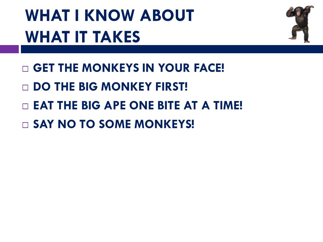 WHAT I KNOW ABOUT WHAT IT TAKES  GET THE MONKEYS IN YOUR FACE.