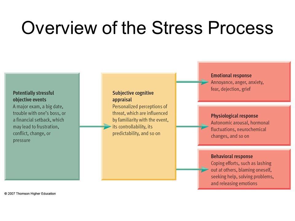 Overview of the Stress Process