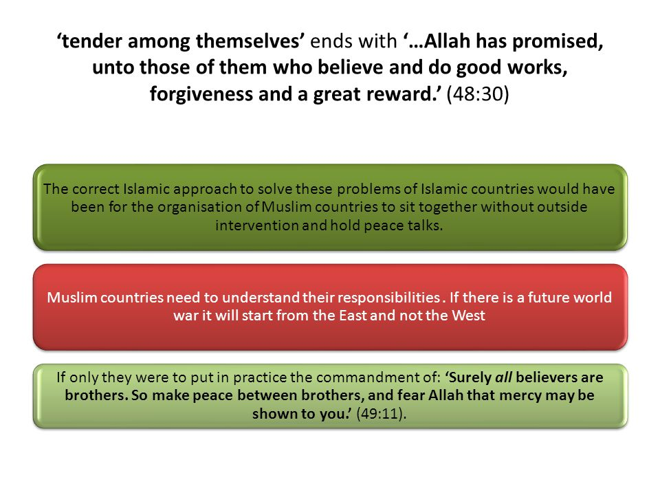'tender among themselves' ends with '…Allah has promised, unto those of them who believe and do good works, forgiveness and a great reward.' (48:30) The correct Islamic approach to solve these problems of Islamic countries would have been for the organisation of Muslim countries to sit together without outside intervention and hold peace talks.
