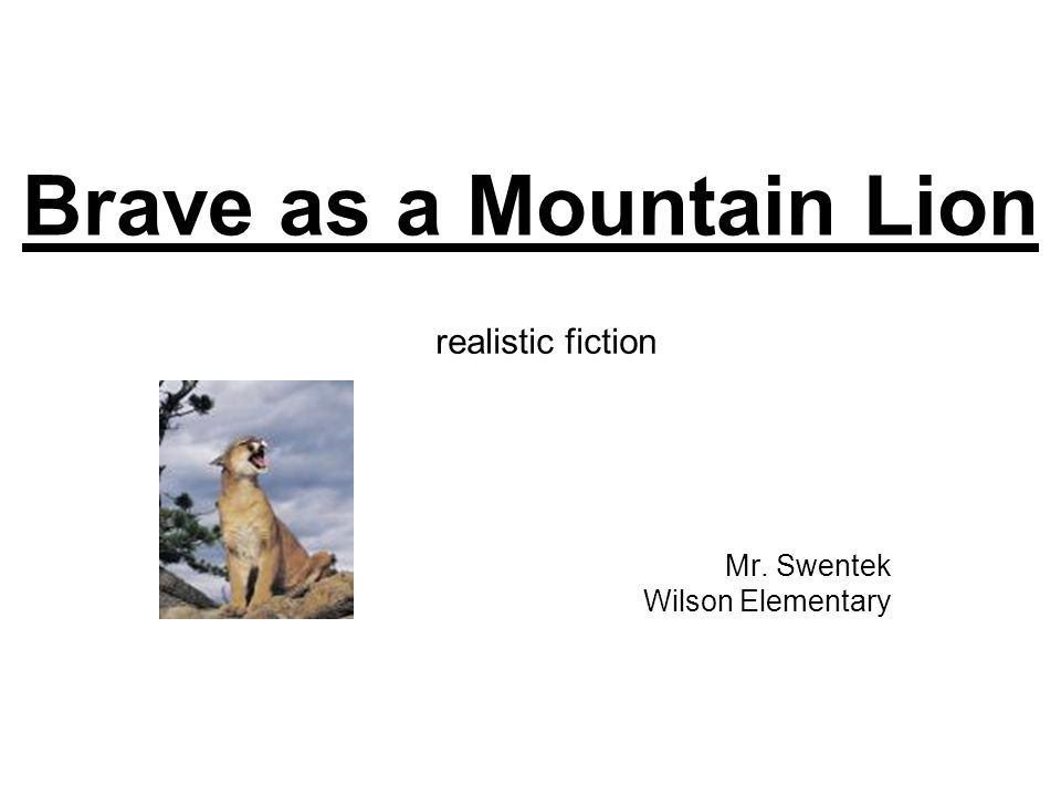 Brave as a Mountain Lion Mr. Swentek Wilson Elementary realistic fiction