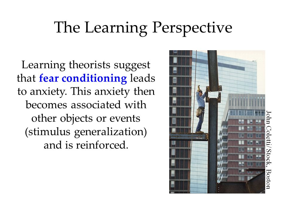 The Learning Perspective Investigators believe that fear responses are inculcated through observational learning.