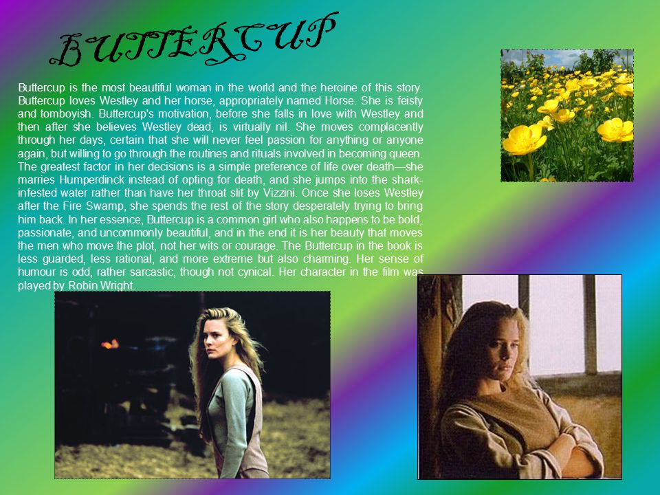 BUTTERCUP Buttercup is the most beautiful woman in the world and the heroine of this story. Buttercup loves Westley and her horse, appropriately named