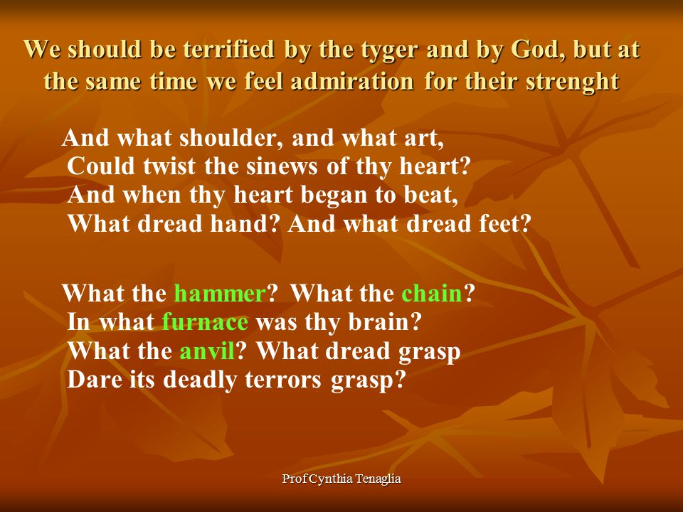 Prof Cynthia Tenaglia We should be terrified by the tyger and by God, but at the same time we feel admiration for their strenght And what shoulder, and what art, Could twist the sinews of thy heart.