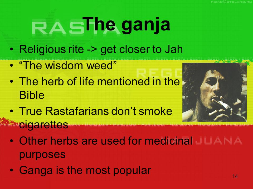 14 The ganja Religious rite -> get closer to Jah The wisdom weed The herb of life mentioned in the Bible True Rastafarians don't smoke cigarettes Other herbs are used for medicinal purposes Ganga is the most popular
