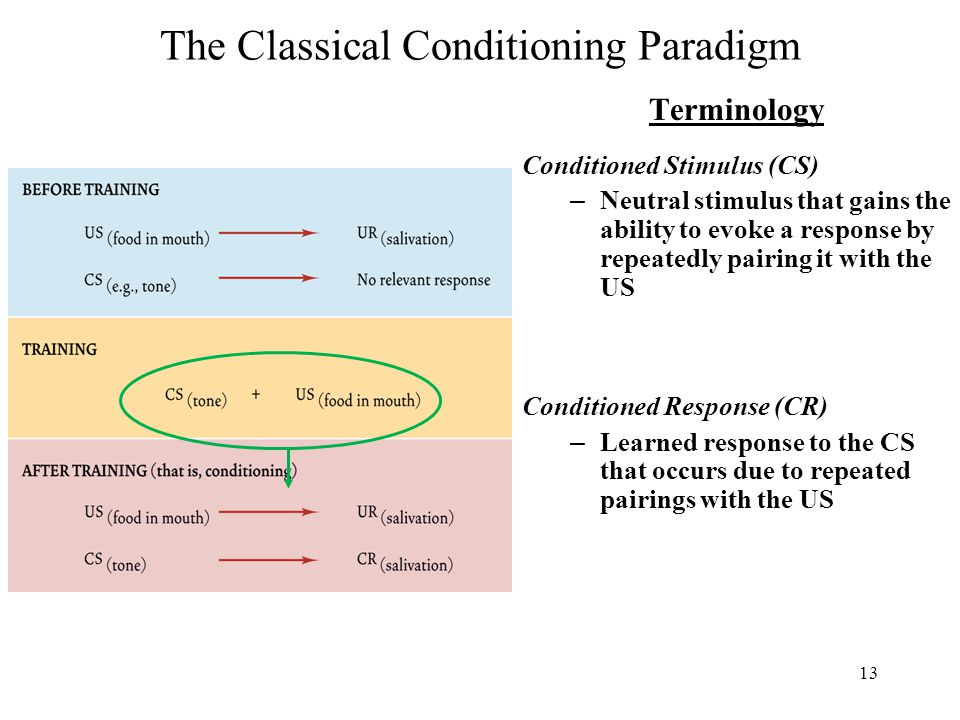 13 The Classical Conditioning Paradigm Terminology Conditioned Stimulus (CS) – Neutral stimulus that gains the ability to evoke a response by repeatedly pairing it with the US Conditioned Response (CR) – Learned response to the CS that occurs due to repeated pairings with the US