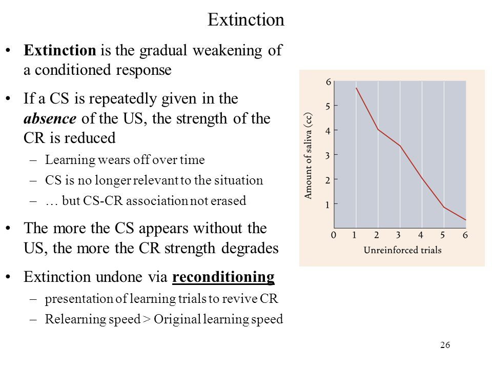 26 Extinction Extinction is the gradual weakening of a conditioned response If a CS is repeatedly given in the absence of the US, the strength of the CR is reduced –Learning wears off over time –CS is no longer relevant to the situation –… but CS-CR association not erased The more the CS appears without the US, the more the CR strength degrades Extinction undone via reconditioning –presentation of learning trials to revive CR –Relearning speed > Original learning speed