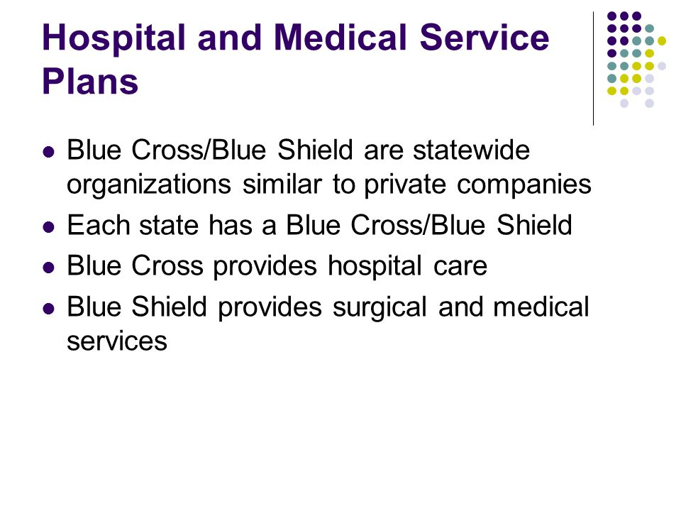 Hospital and Medical Service Plans Blue Cross/Blue Shield are statewide organizations similar to private companies Each state has a Blue Cross/Blue Sh
